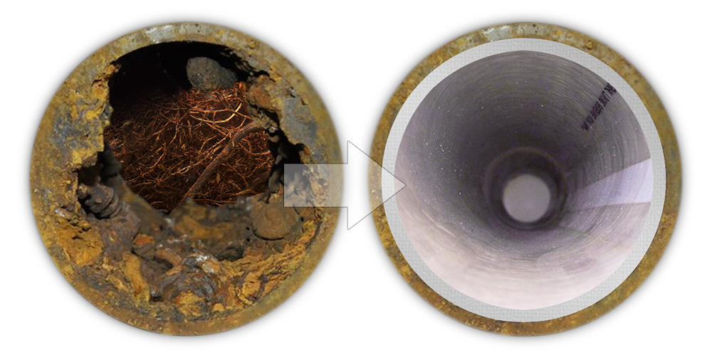 Before & After Sewer Repair